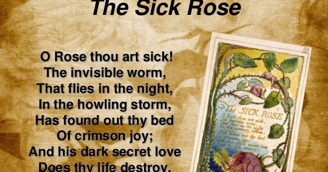 """the symbol of the rose in william blakes poem the sick rose The plate shows a rose bush whose stem arches over the poem,  39, keynes 39) """"the sick rose"""" – from the william blake  is a symbol of purity."""