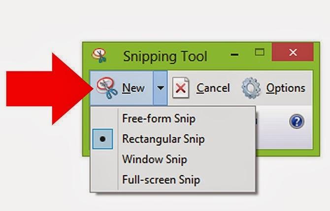 Vista Basic Snipping