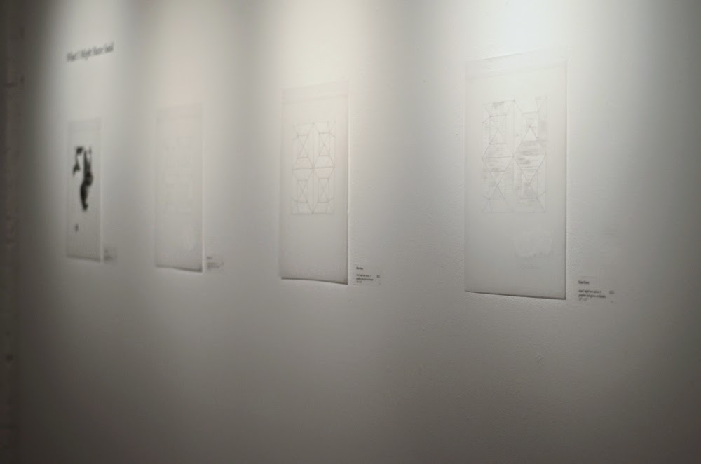 "Erin Curry Art drawings ""What I Might Have Said"" graphite, gesso on Duralar solo show"