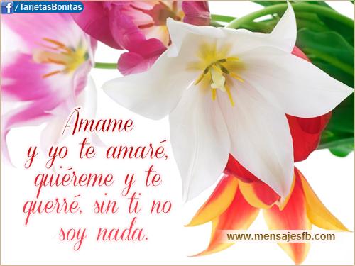 Tarjetas con frases para enamorados ~ Mensajes Bonitos de Amor ...