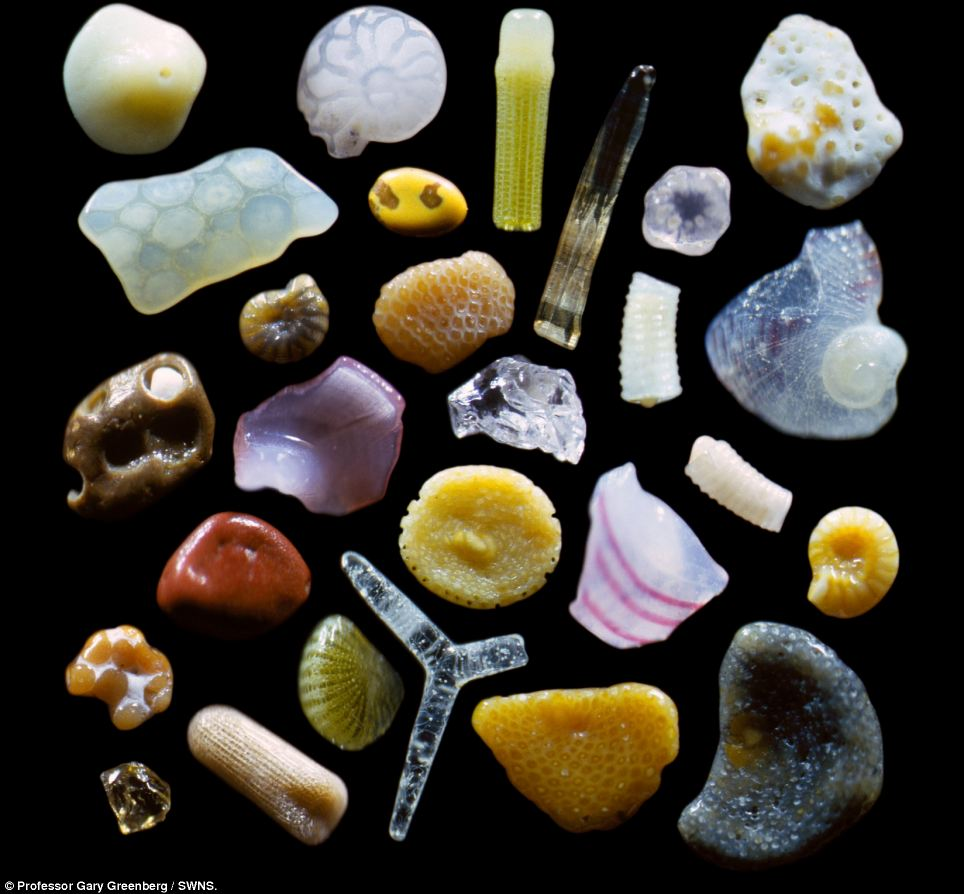 Gambar-gambar pasir halus yang dibesarkan 250 kali saiz asal
