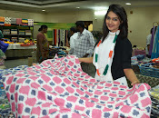 Neha Deshpande at Pochampally IKAT Art Mela 2015 Photos-thumbnail-12