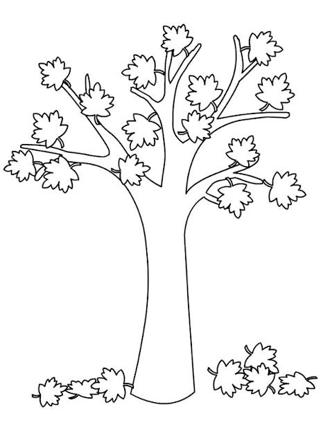 Autunno - albero