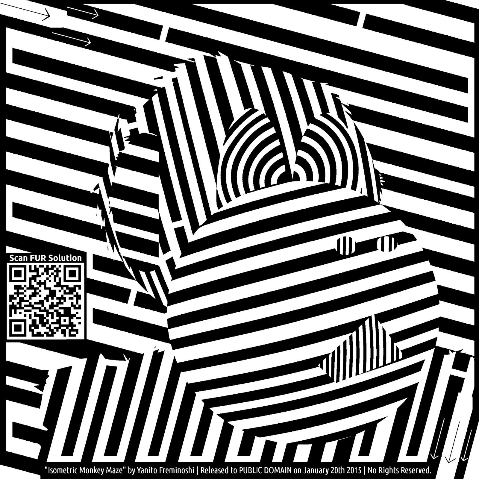 maze of monkey isometrics