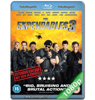 LOS INDESTRUCTIBLES 3 (2014) EXTENDED FULL 1080P HD MKV ESPAÑOL LATINO