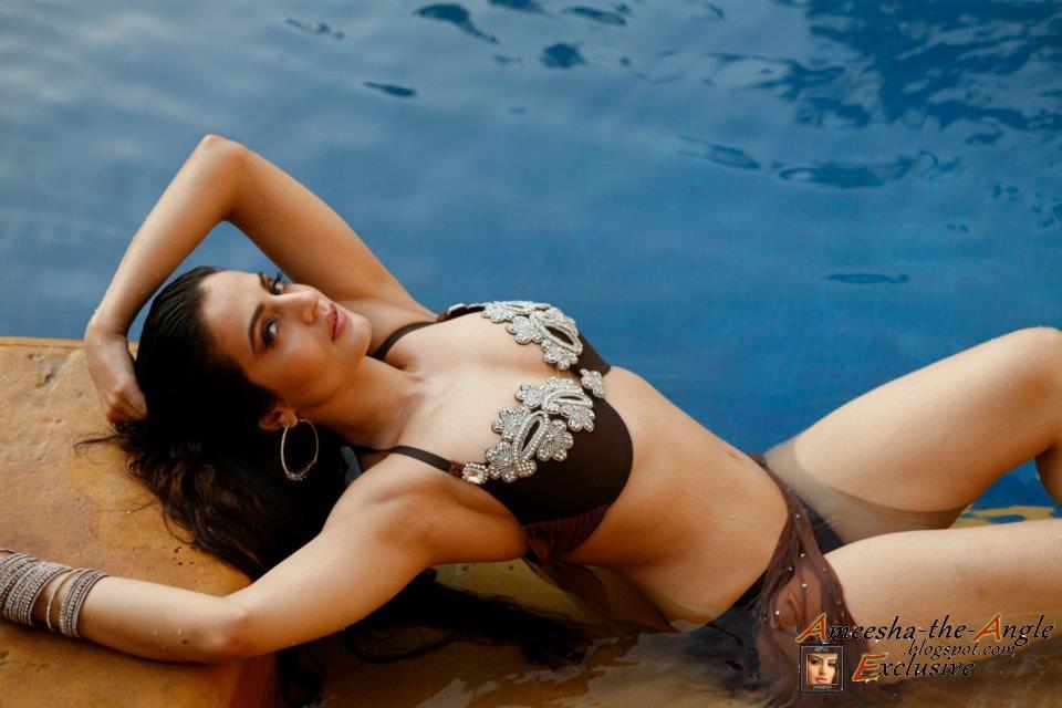 Amisha Patel   Bollywood Film Actress   Stills  Photos