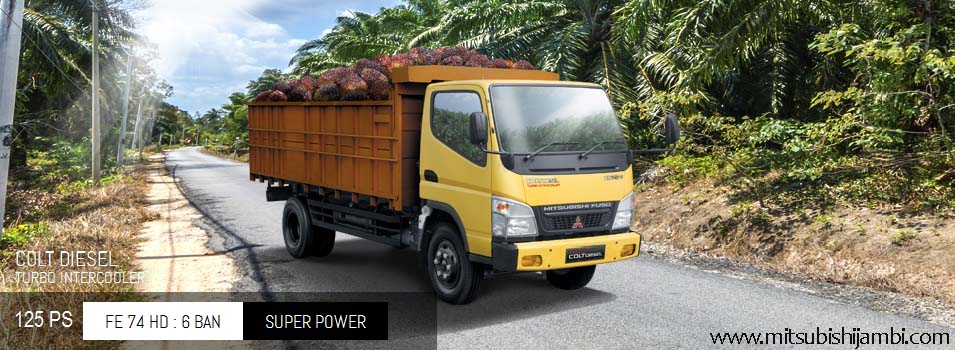 Mitsubishi Colt Diesel Canter FE 74 HD 125 PS Jambi