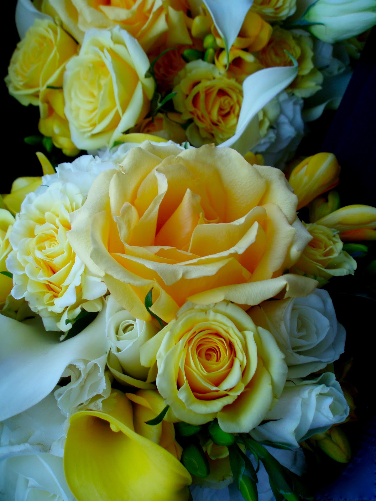 The Flower Girl Blog yellow and white wedding
