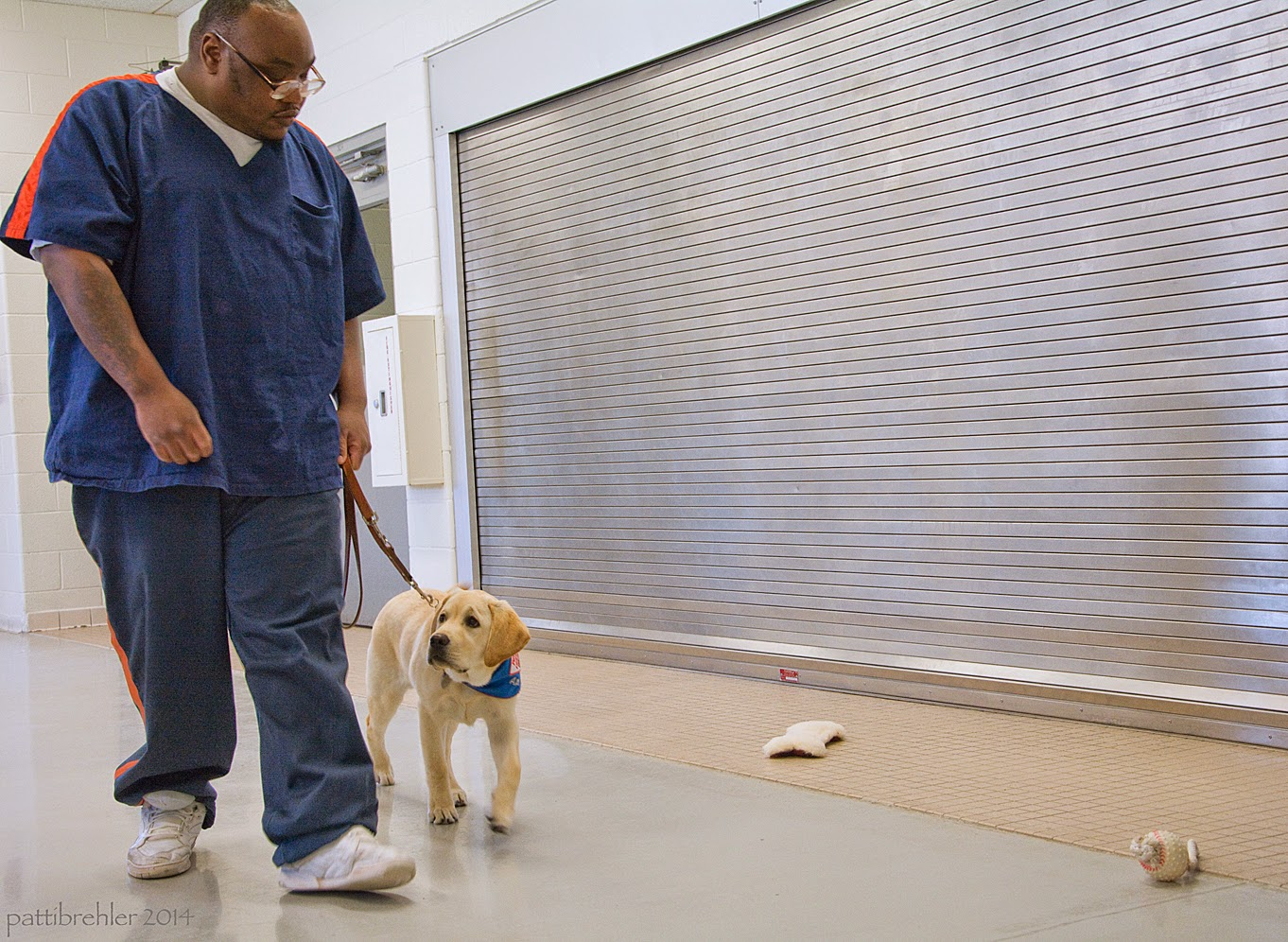 A large african american man is walking toward the camera with a young yellow lab at his left side. The man has the leash in his left hand and the leash is loose. The puppy has his head turned away from the toys ont he floor on the right side.