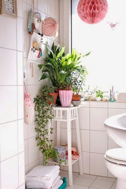 se invece amate i fiori adatti al bagno sono le orchidee e la kalanchoe addirittura le bulbose vanno benissimo per il bagno come i narciso e i tulipani