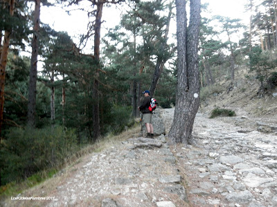 Calzada Romana de las Dehesas de Cercedilla