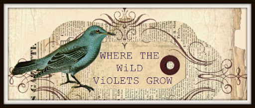 Where the Wild Violets Grow