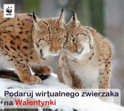 http://kupzwierzaka.wwf.pl/