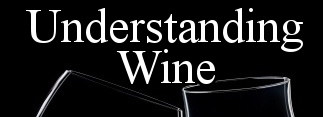Understanding Wine TV
