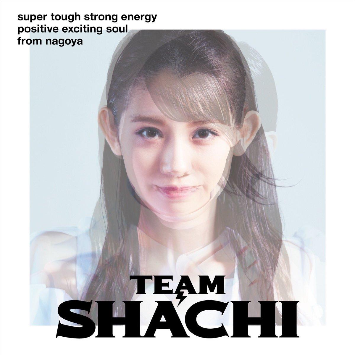 TEAM SHACHI MVメイキング&SNS広告