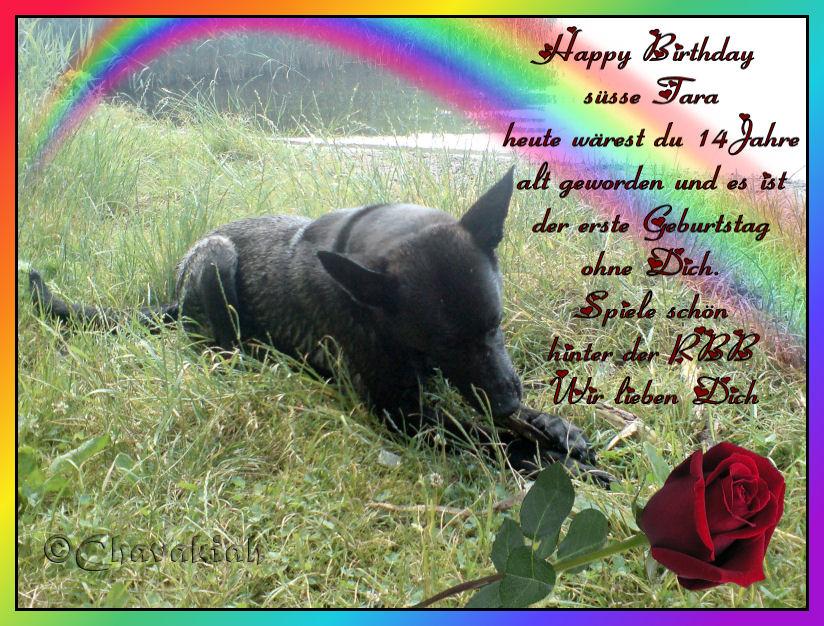 Unsere Wackelnasen Happy Birthday Schroder