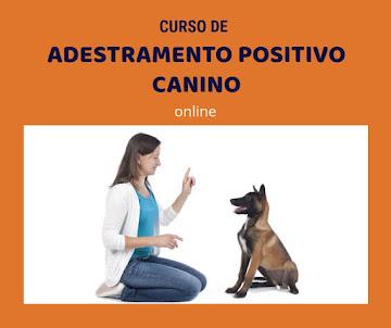 Curso de Adestramento Positivo Canino (para donos)