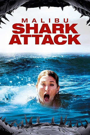 Poster Of Malibu Shark Attack In Dual Audio Hindi English 300MB Compressed Small Size Pc Movie Free Download Only At cintapk.com