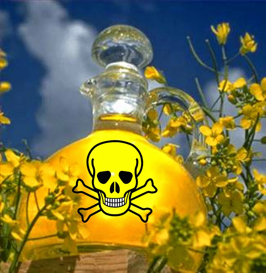 huile colza danger
