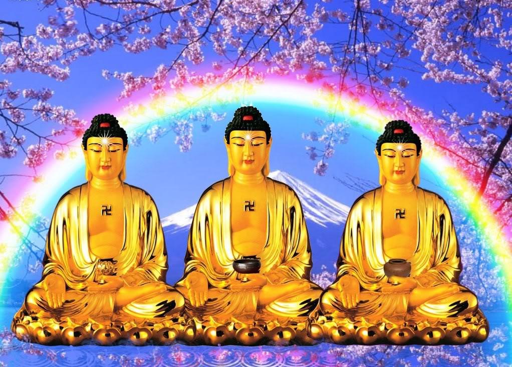 Tam Bảo Là Gì? -Ý Nghĩa Của Quy Y Tam Bảo – Phật Học Cơ Bản
