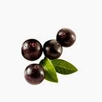 myexfuzeonline beli exfuze jadi ahli acai berry