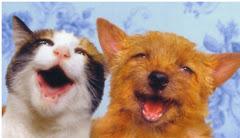 AJAJAJAJA miraaa allá, ese ratón se tropezó!!! ¿nos lo comemos? -(perro)prefiero los huesos.