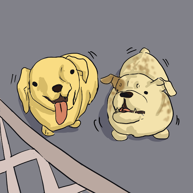 Two Dogs Excited Gin Birthday Comic Panel 9