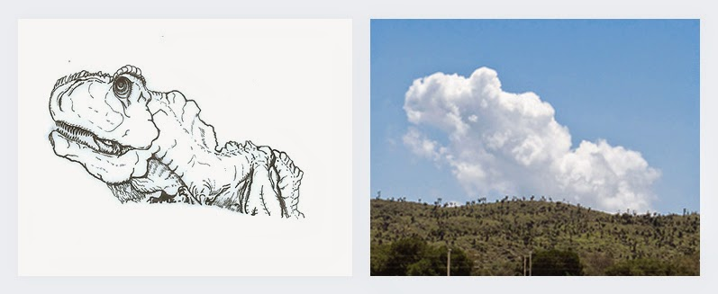 02-T-Rex-Cloud-Detail-Martín-Feijoó-Images-in-the-Sky-Cloud-Drawings-www-designstack-co