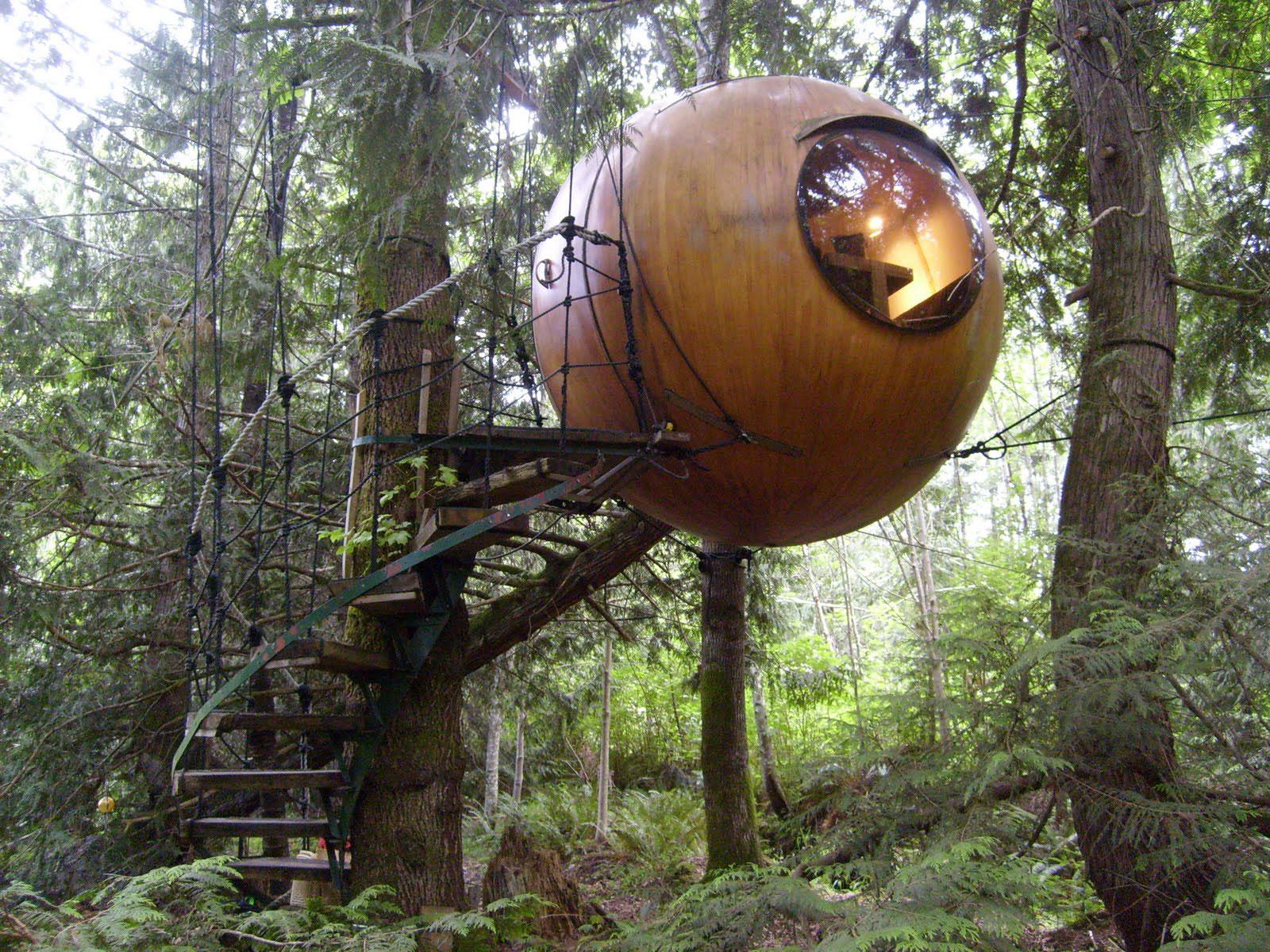 Tree House Resort Vancouver Island