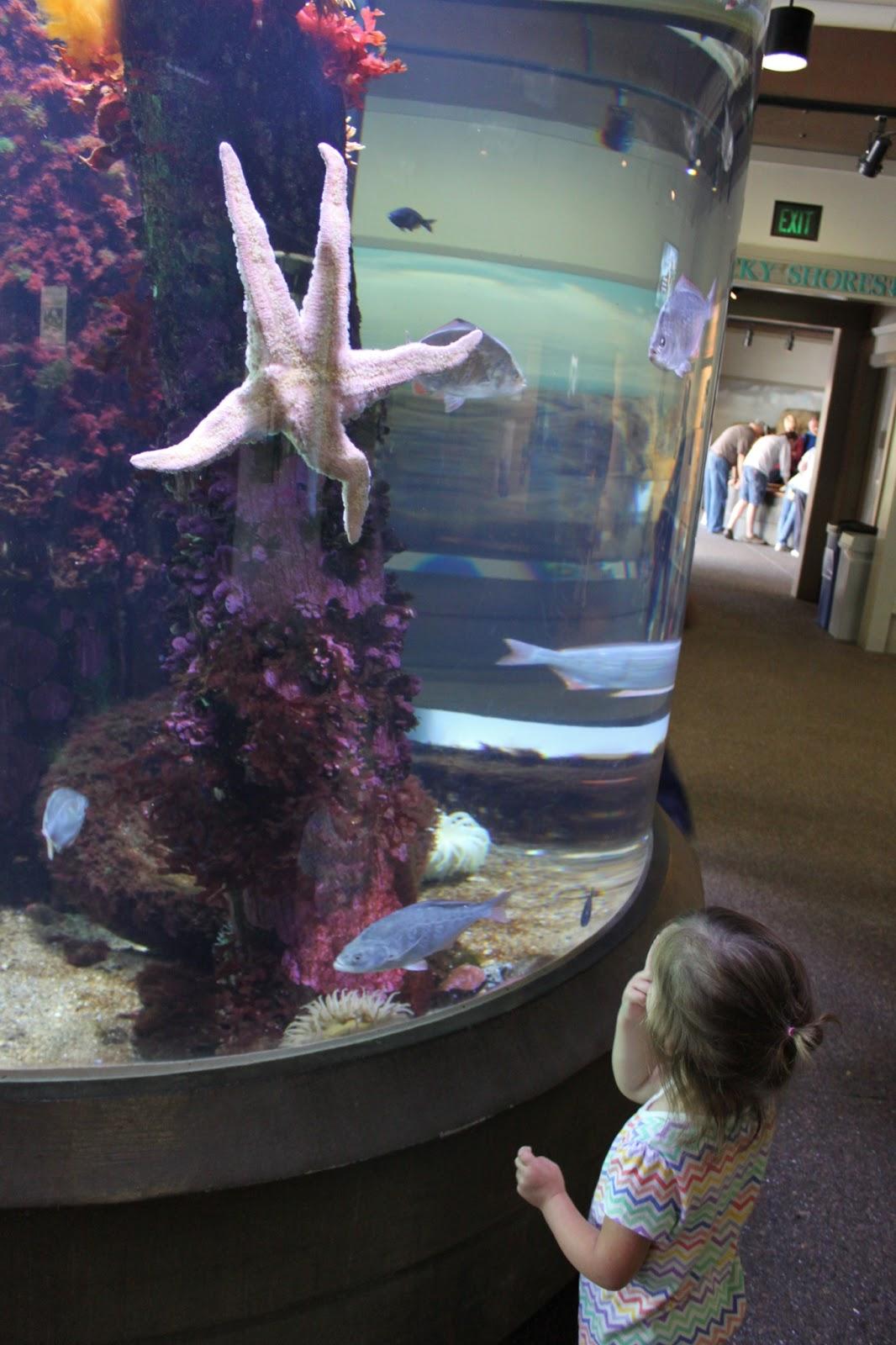 Oregon coast aquarium coupons discounts