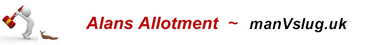 Alans Allotment