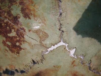 Λύθηκε το μυστήριο με τα 450 πτώματα βρεφών στην Αρχαία Αγορά