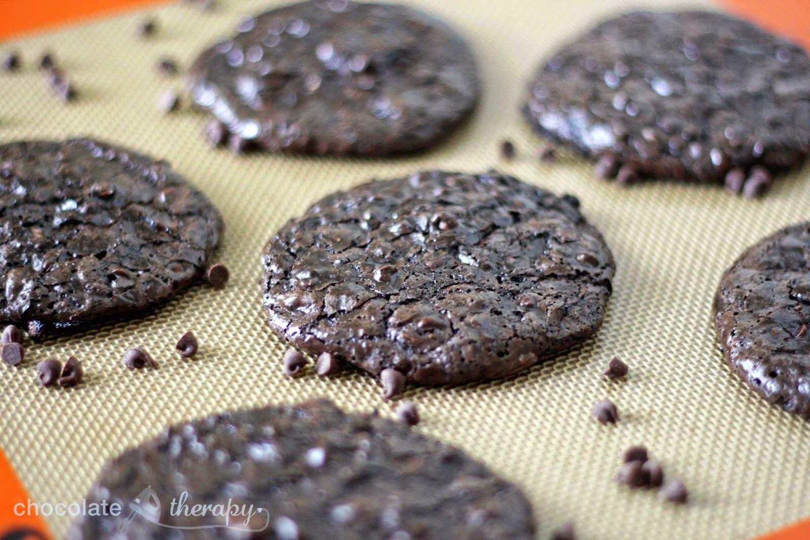Chocolate Therapy: Flourless Chocolate Almond Cookies