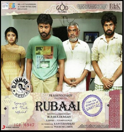 Rubaai (2017) Dual Audio Hindi 400MB UNCUT HDRip Download