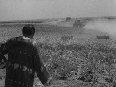 Jalsaghar: Huzur's elephant about to be engulfed by dust, Jalsaghar aka The Music Room (1958), Directed by Satyajit Ray