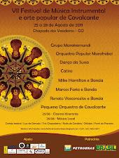 Cartaz Oficial VII Festival