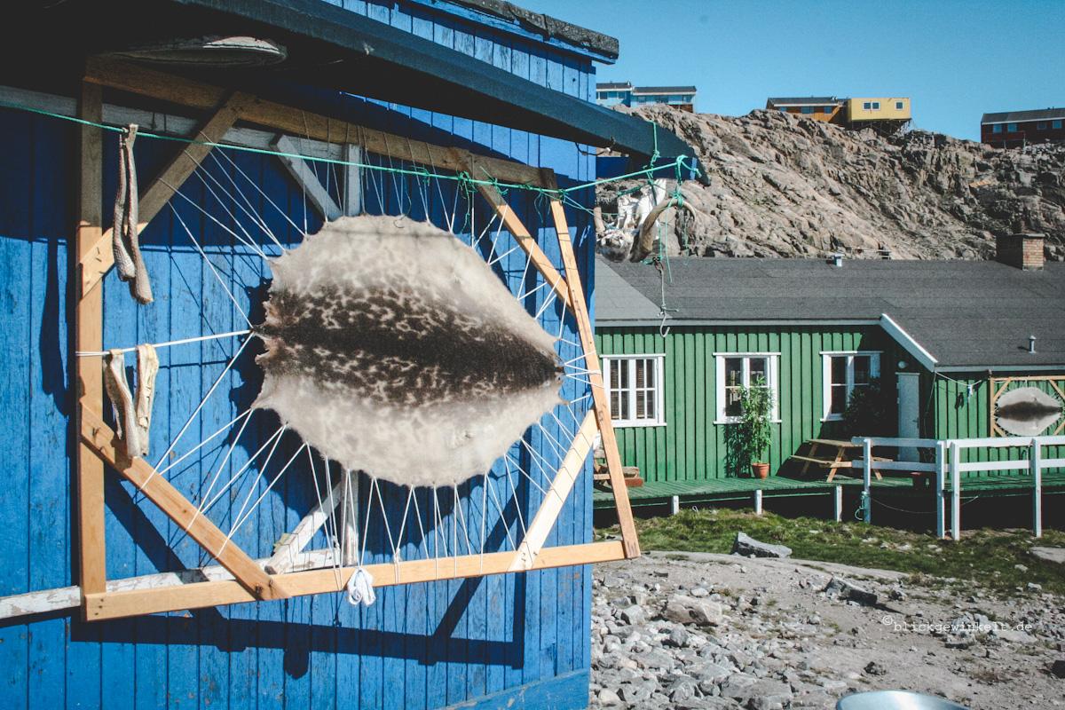Robbenfelle hängen zum Trocknen an der Hauswand