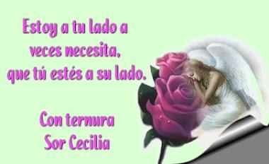 FRASE CON TERNURA DE SOR CECILIA-GRACIAS