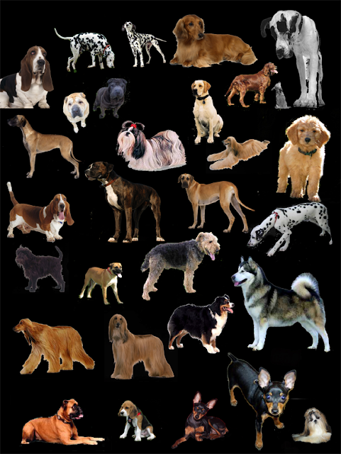 cut out dogs #1