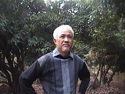 Nhà văn ĐẶNG VĂN SINH (daothaivan09@gmail.com)
