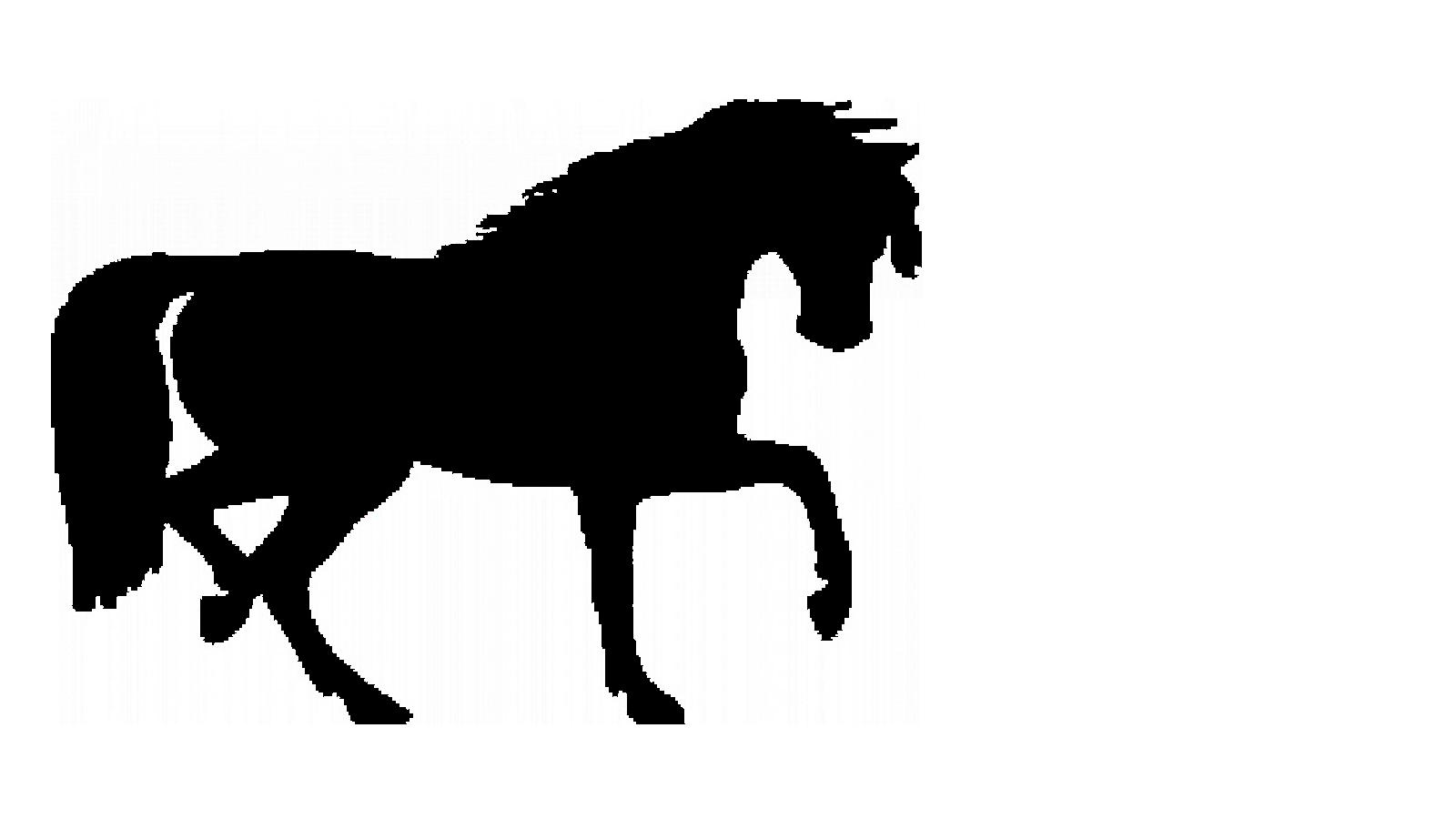 mascara silhueta cavalo tr_1920x1080