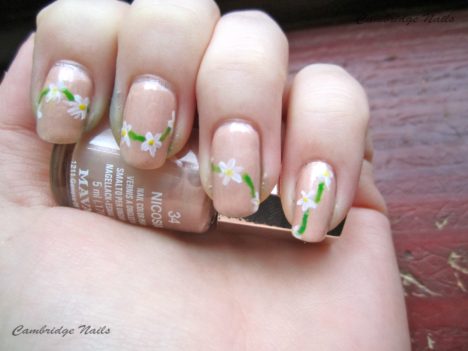 Cambridge Nails: Daisy chain nails