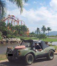 Vendo Buggy Cheda Selva MB 87/88