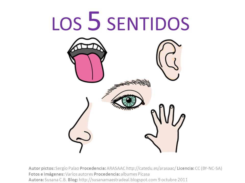 Susana maestra de a l octubre 2011 for Mural de los 5 sentidos