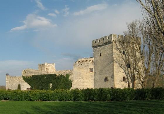 burgos_imagen_castillo_fortaleza_sotopalacios_cid