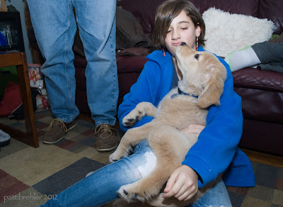 A brown haired girl dressed in blue sits on the floor with a golden retriever puppy in her lap. He is stretching his head back to give her a lick. My husband Andy's legs are behind the girl on the left, and my other niece, Sofia's legs are on the couch.