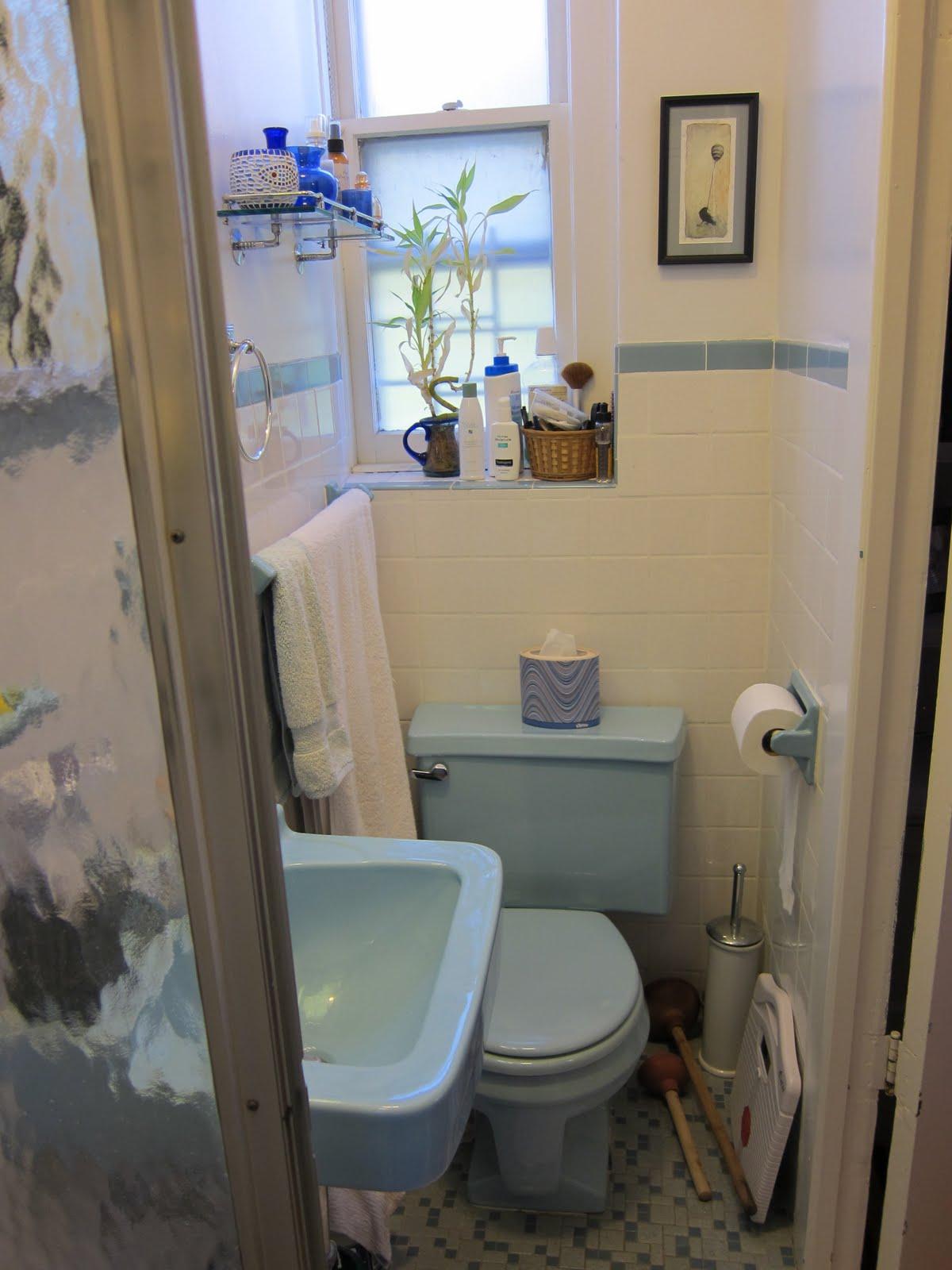 Reader Submission: Rachelu0027s NYC Master Bathroom Reno