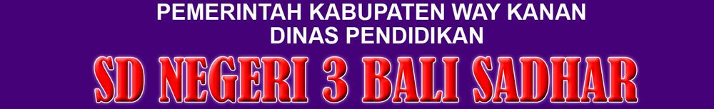 SDN 3 BALI SADHAR