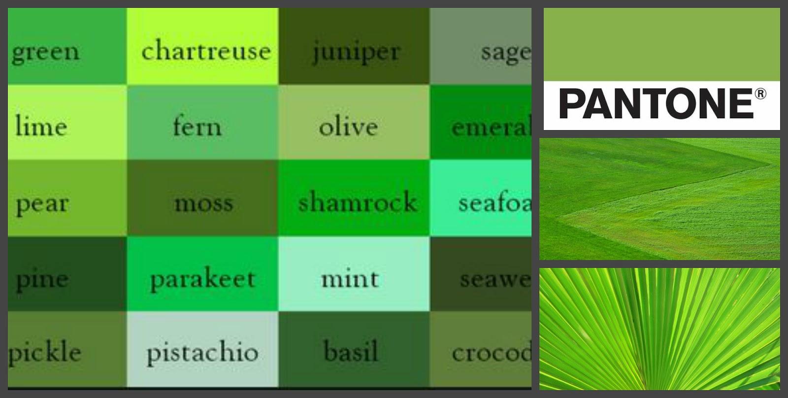 Название цветов зеленых оттенков