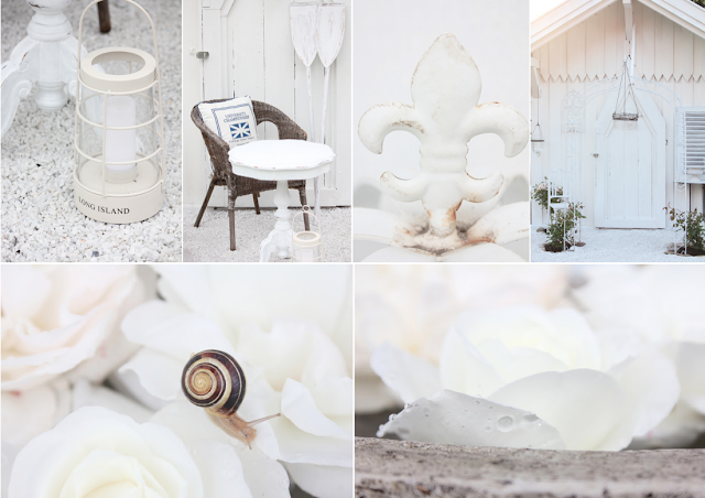 White and shabby white magic - Gartenhaus shabby streichen ...
